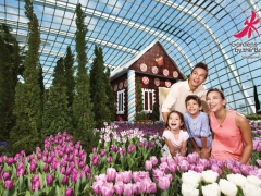 15% Off Admission Tickets in Gardens by the Bay with OCBC Cardssi
