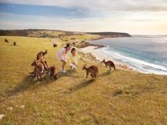 Australia Travel Fair