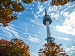 Special Economy Class Fares to Korea from SGD578 via Cathay Pacific