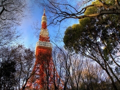 Early Grab Fares to Japan with DBS/POSB Cards and Cathay Pacific