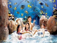 Enjoy 15% Off Admission Ticket to Adventure Cove Waterpark with Citibank