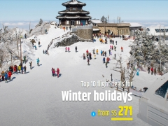Winter Holiday Special from SGD271 with CheapTickets.sg