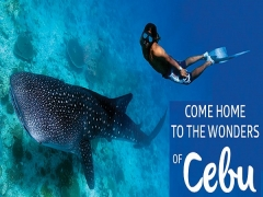 Fly to Cebu and Do More with Philippine Airlines from SGD229