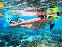 Redang: Resort, Coach & Snorkel