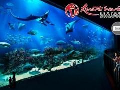 S.E.A. Aquarium & Adventure Cove