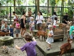 Bali: Admission to Bali Zoo