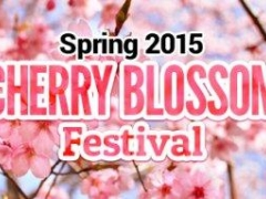Spring 2015 Cherry Blossom Festival, Book your hotel stay from S$77