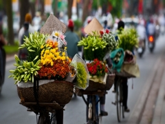 Special Airfares From Singapore To Ha Noi from SGD173 on Vietnam Airlines