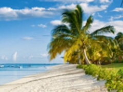 Air Mauritius Special Economy Offers