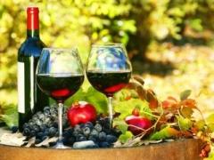 Bangkok Add-On Land Tour: $90 per pax for Hua Hin Vineyard and Thai Wine Tasting Tour