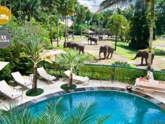 Bali: 5* Lodge + Elephant Safari