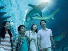 RWS Moments Package: 2N Stay at Hard Rock Hotel, Hotel Michael, Festive Hotel, Equarius Hotel and Beach Villas (1-bedroom villa)