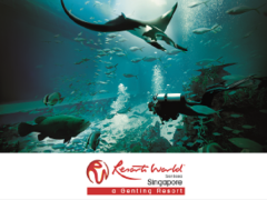 50% Off on 2nd Adult One-Day Ticket in S.E.A. Aquarium with NTUC Card