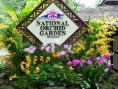 Enjoy 50% Off Admission Ticket to National Orchid Garden with Maybank