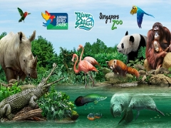 Save up to 30% on Admission Tickets to Jurong Bird Park and River Safari with NTUC Card