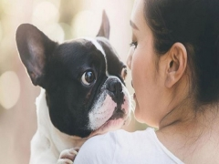 Regent Singapore Bring Your Pet Staycation with 25% Savings