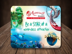 Save SGD10 in Sentosa Island Attractions for NTUC Cardholders