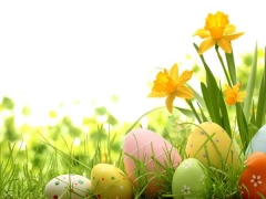 Easter Package Offer in Swiss-Belhotel Papua Jayapura with 15% Savings