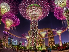 Up to 10% Off Gardens by the Bay Tickets Exclusive for PAssion, SAFRA, NTUC and Home Team NS Cardholders