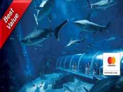 Mastercard Exclusive: S.E.A. Aquarium + The Maritime Experiential Museum Adult One-Day Tickets + Typhoon Theatre + Meal Voucher at SGD45 (Save 28%)