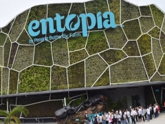 Stay Entopia Promotion in Holiday Inn Penang