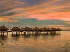 Advance Purchase Deal in Avani Sepang Goldcoast Resort with up to 20% Savings