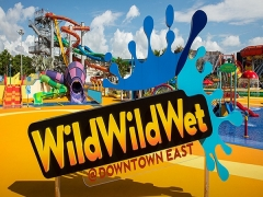 Up to 20% Off Day Passes for Wild Wild Wet with UOB Card