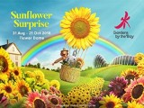 Gardens by the Bay, Flower Dome (Sunflower Surprise) Special Offer Exclusive for OCBC Cardholders
