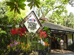 Up to 50% Off Admission to National Orchid Garden with Maybank Card