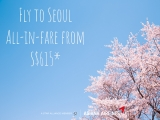 Fly to Seoul from SGD615 with Asiana Airlines and AMEX Card
