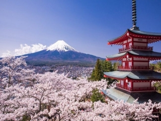 1-FOR-1 Special – 4D3N Japan Free & Easy