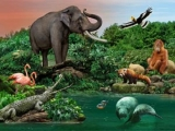 Up to 30% Off Wildlife Reserve Singapore Tickets with PAssion Silver Card