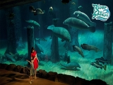 Enjoy 10%* OFF Prevailing Park Admission Prices in River Safari with NTUC Card