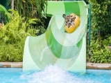 Adventure Cove Waterpark Adult One-Day Ticket + SGD5 Retail Voucher at SGD34