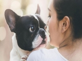 Bring Your Pet Staycation at Regent Singapore