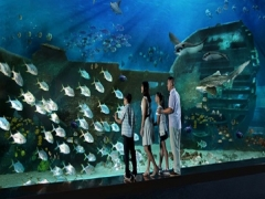 Mastercard® Exclusive: S.E.A. Aquarium Adult Dated One-Day Ticket + SGD5 Meal Voucher & Free Plush at SGD40