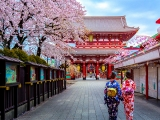 Fly to Japan from SGD555 with Thai Airways and OCBC Card