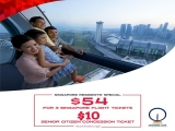 National Day Promotion at Singapore Flyer