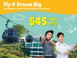 Fly and Dream Package with Singapore Cable Car and Kidzania Tickets