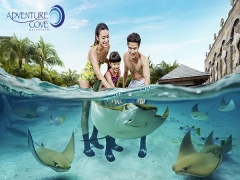 Exclusive Offer for NTUC Cardholders at Adventure Cove Waterpark