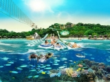 1-for-1 Adventure Cove Waterpark tickets with DBS Card