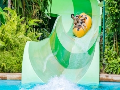 Mastercard® Exclusive: Adventure Cove Waterpark Family Annual Pass + Free 13th month & SGD10 Meal Voucher at SGD208