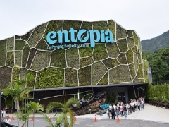 Stay Entopia Offer at Holiday Inn Resort Penang