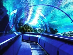 10% off for Aquaria KLCC Admission Ticket with CIMB Bank Card
