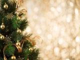 Pure Magic - Celebrate the Holidays at The Ritz-Carlton Millennia Singapore