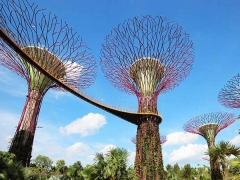 10% Off on Gardens by the Bay Tickets Exclusive for PASSION, SAFRA, NTUC & HOMETEAMNS Cardholders