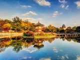 Discover South Korea with Singapore Airlines and SilkAir