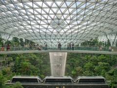 Staycay and Explore Canopy Park with Room at Grand Mercure Singapore Roxy