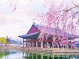 Amazing Fare Deals to Seoul with Korean Air