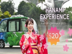 Hanami Experience in Gardens by the Bay from just SGD20